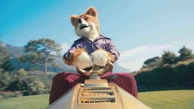 Foxy Bingo Born Free